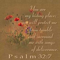 Eleventh Sunday in Ordinary Time ' You are my hiding place, O Lord; you save me from distress. You surround me with cries of deliverance' Psalm Scripture Verses, Bible Scriptures, Bible Quotes, Bible Quotations, Prayer Verses, Lord And Savior, King Jesus, Favorite Bible Verses, Praise The Lords
