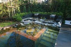 Natural Swimming pool by BioNova. Cleaning the pool with plants.