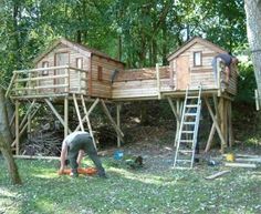 Adult and fancy child Tree House