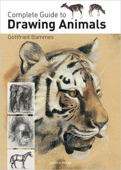 Complete Guide to Drawing Animals: Amazon.co.uk: Gottfried Bammes: 9781844489213: Books
