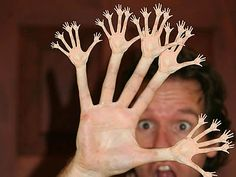 Weird Stuff and Bizarre Oddities from Around the World