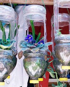 Vasos suspensos de garrafa pet