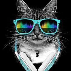 Cool-Cat-by-Júlio-César-Souza-Designhill Photoshop Ideas, Graphic Design Inspiration, Oakley Sunglasses, Creative Design, Gallery, Fashion, Moda, La Mode, Fasion