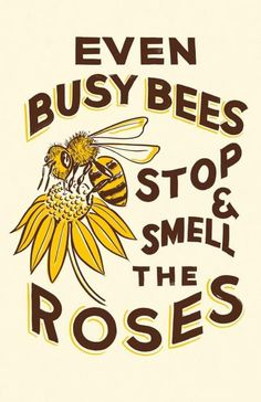Even busy bees stop and smell the roses I Love Bees, Bee Friendly, Bee Crafts, Bee Art, Bee Theme, Busy Bee, Save The Bees, Bee Happy, Bees Knees