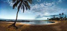 Kauai Art Tour ~ Artists Open Studios 2015 artist: Debbie Barklow - Weekend 1: Lihue #photographer #Kauai #Hawaii #beach #palmtree