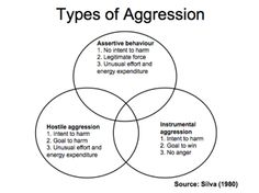 Symbolic aggression includes verbal or physical gestures aimed at terrorizing, threatening, intimidating, dominating, making someone afraid or controlling them e.g. The abuser's tone of voice or actual words can be forms of symbolic aggression and invading/controlling the target's personal space.  The impact of symbolic aggression can be terrifying, causing severe mental distress.