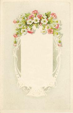 Rosa delicada y flores blancas. -Encaje como marco.