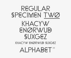 Ill Studio / Zadie Smith [Penguin Press] — #Typeface