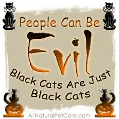 Black Cats Are Not Evil [Awareness Poster] - Silly superstitions and folklore can make October a dangerous time for black cats. Please help us create awareness by sharing the graphics we design on social media or your website.