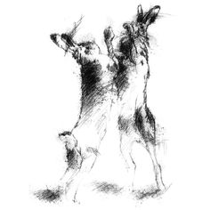 Fine Art Drawing, Art Drawings, Sketch A Day, Shop Art, Uk Shop, Surface Design, Boxing, Giclee Print, How To Draw Hands