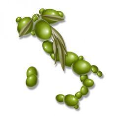 La cultura dell'olio extra vergine di oliva, a livello internazionale, si sta formando con luoghi comuni. Necessaria un'operazione educativa per far leggere l'etichetta e far capire che di oli non ce n'è uno ma tanti, diversi per territori e varietà