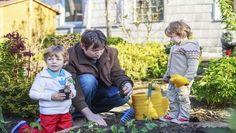 non è ancora primavera ma ci sono dei piccoli lavori di giardinaggio che se fatti bene entro la seconda quindicina di febbraio preparano il nostro verde all'arrivo della bella stagione....