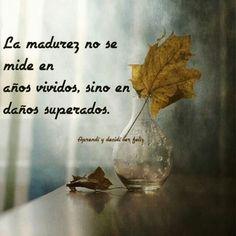 ... La madurez no se mide en años vividos, sino en daños superados.
