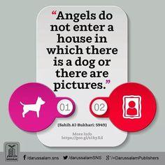 #پیغام_حدیث Daily Hadith | Angels dont enter in a home having Dog Pictures  ابوطلحہ رضى الله عنهم سے روایت ہے کہ نبی صلی اللہ علیہ وآلہ وسلم نے فرمایا کہ فرشتے اس گھر میں داخل نہیں ہوتے جس میں کتے ہوں اور نہ اس گھر میں جس میں تصویریں ہوں [Sahih Al-Bukhari Book of Dress Hadith: 5949]  #Angels #Hadith #Pictures #Darussalam Garden Quotes, Hadith, Deen, Dog Pictures, Islamic, Angel, Books, Livros, Angels