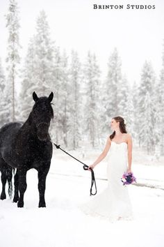 OMG. I will DIE if a bride would bring a horse to her winter wedding! Or to any wedding. I just want a horse at a wedding!