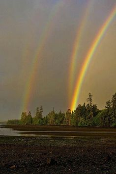 Four Rainbows. Stunning-never saw anything like this.