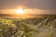 Our resident Devon expert shares tips and recommendations on her favourite spots in the region, from vast wilderness areas to scenic coasts. Devon, Uk Landscapes, England, Dartmoor, Landscape Photos, Campsite, Life Is Beautiful, Wilderness, Britain