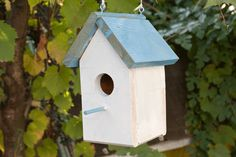 How to build a Bird House with step-by-step instructions.