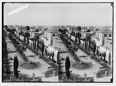 Jewish colonies and settlements. Tel Aviv. Tel Aviv gen[eral] view