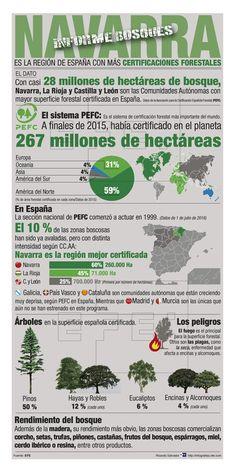 Navarra, La Rioja y Castilla y León, regiones con más certificaciones forestales