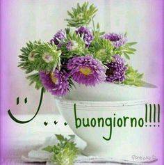 http://ift.tt/2v1ux7d Frasi di buongiorno sms di buongiorno messaggi di buongiorno buongiorno per te bongiorno per whatsa #italianmemes