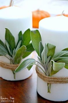Sage Candles  - HouseBeautiful.com