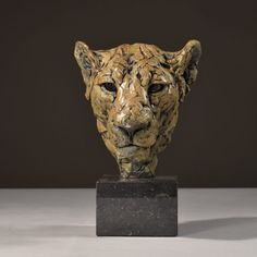 Hamish Mackie has created this compelling study of a Lioness Head in bronze, from observation of the lions at Lew Wildlife Conservancy. Sculpture Head, Bronze Sculpture, Lion Sculpture, Wild Lion, Animal Sculptures, Clay Sculptures, Majestic Animals, Pictures To Draw, Clay Art