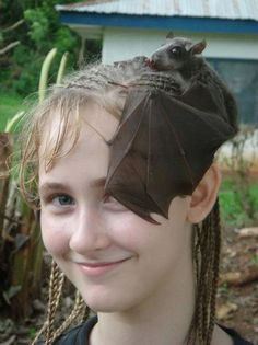 I have a fascinator with a spider, maybe I also need a bat! Love this.