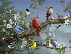Magic Slice Songbirds in Apple Blossoms by James Hautman Non-Slip Flexible Cutting Board Pretty Birds, Beautiful Birds, Vogel Gif, Animals And Pets, Cute Animals, Spring Birds, Cardinal Birds, Backyard Birds, Bird Pictures