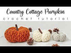 This free and easy crochet pumpkin pattern works up fast! You won't be able to get enough of it's amazing texture and squish! Crochet Fall, Easy Crochet, Free Crochet, Knit Crochet, Crochet Pumpkin Pattern, Crochet Patterns, Pumpkin Uses, Scarecrow Wreath, Front Post Double Crochet