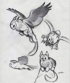 """""""And Yet More Owl Griffin by RobtheDoodler"""" In case you were wondering just what an Owl Griffin is...."""