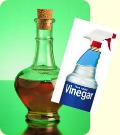Para retirar o cheiro de urina e fezes deixado pelos animais de estimação: Aplique no local uma solução de dois terços de água morna e um terço de vinagre e deixe secar naturalmente.