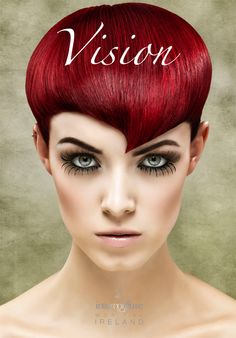 VISION...magazine of Intercoiffure Ireland  2013 can be downloaded from newsstand on ipad
