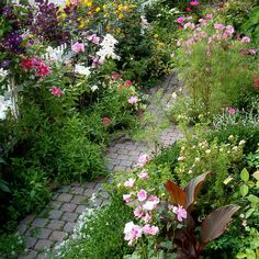 Cottage Garden Design Ideas, Pictures, Remodel, and Decor - page 14
