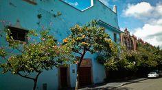 """CUERNAVACA, MEXICO"" by J Rutledge on Exposure"