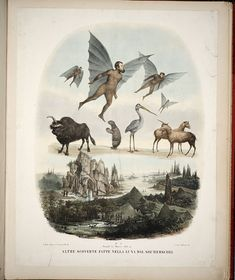 "Leopoldo Galluzzo / Altre scoverte fatte nella luna dal Sigr. Herschel / 1836 / This portfolio of hand-tinted lithographs purports to illustrate the ""discovery of life on the moon.""   Flora and fauna included bat-men, moon maidens (with luna-moth wings), moon bison, and other extravagant life forms."