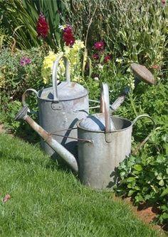 antique watering cans for veggie display? Rusty Garden, Garden Junk, Garden Art, Garden Tools, Garden Oasis, Galvanized Decor, Galvanized Buckets, Veggie Display, Vintage Garden Decor