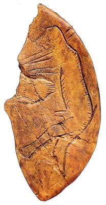 Man confronted by a bear. Carved on bone about 10,000 years ago. Found at Le Mas d'Azil.