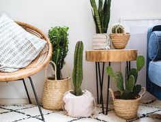 3 Easy Planter Ideas (When You're Too Lazy To Repot is part of Easy home decor - Hey guys! Sharing little plant hack that I use when I want my plants to look great, but can't be bothered to repot them Read on to see 3 easy planer ideas! Living Room Decor, Bedroom Decor, Bedroom Green, Bedroom Ideas, Living Rooms, Yoga Room Decor, Bedroom Plants, White Bedroom, Apartment Plants