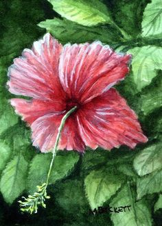 ACEO Original Painting Hibiscus flower floral tropical red green #Impressionism