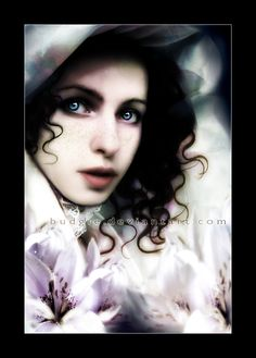 Lilium by sambees on deviantART