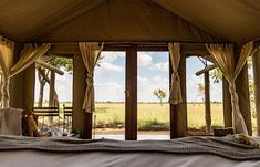 Room with a view - guest accommodation at Davison's in Zimbabwe's Hwange NP Africa Travel, Us Travel, Zimbabwe, Gazebo, Safari, Traveling, Outdoor Structures, Tours, Room