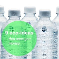 9 easy eco-friendly ideas that will save you money