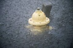 A fire hydrant goes under water at 14th Avenue South in North Myrtle Beach. As rains increase Friday evening, areas of Ocean Blvd. in North Myrtle Beach are flooding.