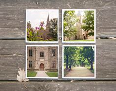 Kenyon College Photo Coasters  Butterfly - set of 4 $28.00   Erin Beutel Photography