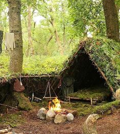 Vintage bushcraft know-hows that all wilderness hardcore will want to learn right now. This is basics for bushcraft survival and will certainly defend your life.