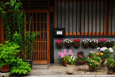 https://flic.kr/p/nRnbmD   Kyoto-古街散策   早晨京都的老街很適合散策, 很輕鬆, 而且映入眼簾的都是整齊乾淨的老街老房子, 讓人不自覺得停下腳步。