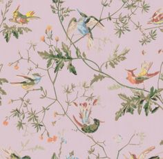 Cole & Son Hummingbirds Lilac Wallpaper Ships Free