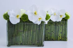 Beautiful white wanda for offic/ial event/flower arrangement/flower decor