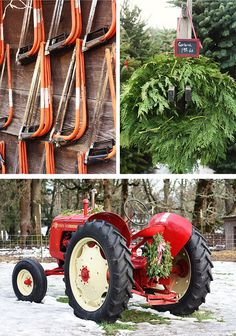 The Harvest: Northern Lights Christmas Tree Farm | Read all about this charming tree farm in Oregon, and get a boost of holiday cheer!